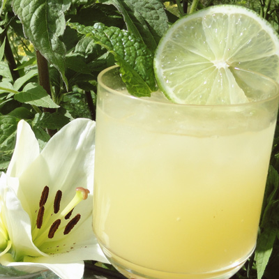 Ginger Slinger Mocktail